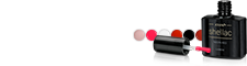 Shellac Farben