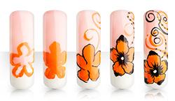 Orange Flowerdream Anleitung
