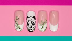 Panda Inspiration