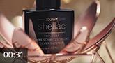 Shellac - Top-Coat o. Schwitzschicht silver Glimmer