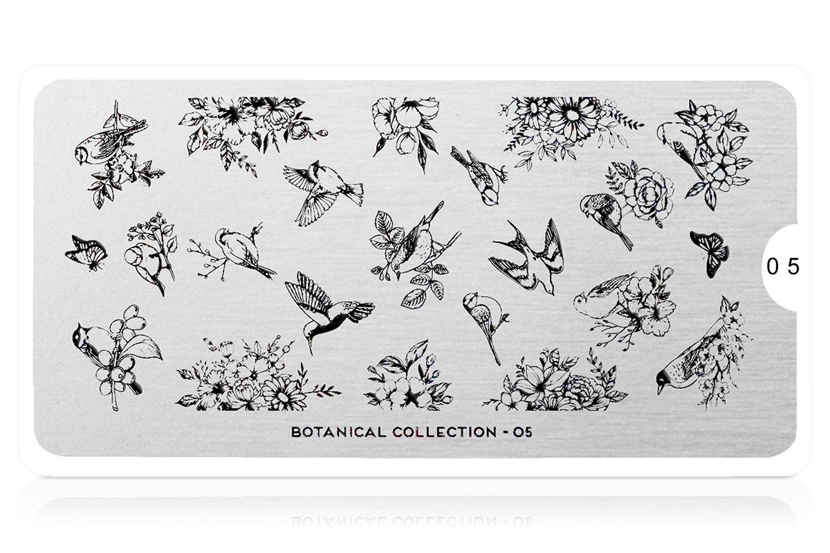 MoYou-London Schablone Botanical Collection 05