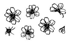 Jolifin LAVENI Sticker schwarz - Nr. 1