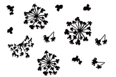 Jolifin LAVENI Sticker schwarz - Nr. 4