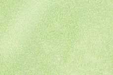 Jolifin LAVENI Diamond Dust - pastell-green