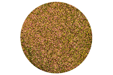 Jolifin Sparkle Pigment - FlipFlop gold & green