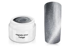 Farbgel magnetic silver 5ml