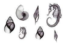 Jolifin Trend Tattoo Nr. 82