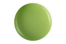 Wetlook Farbgel green avocado 5ml