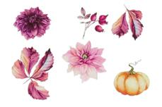 Jolifin Trend Tattoo Herbst 14 Pretty Nail Shop 24