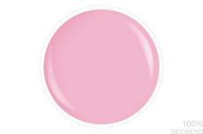 Jolifin LAVENI Shellac - rosé 12ml