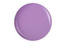 Farbgel wild lilac 5ml