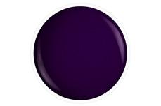 Farbgel midnight berry 5ml