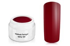 Wetlook Farbgel spicy red 5ml