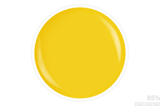 Jolifin LAVENI Shellac - yellow 12ml