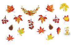 Jolifin LAVENI XL Sticker - Autumn Nr. 1