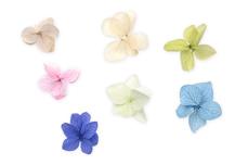 Jolifin XL Nailart-Display - Dried Flowers Nr. 1