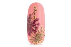 Jolifin XL Nailart-Display - Dried Flowers Nr. 2