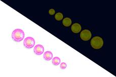 Jolifin LAVENI Strass-Display - Nightshine candy purple