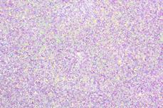 Jolifin LAVENI Diamond Dust - pastell-lavender