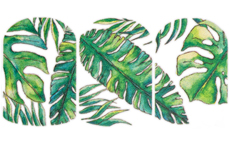 Jolifin Tropical Tattoo Nr. 17