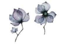 Jolifin Ombre Tattoo - Nr. 46