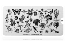 MoYou-London Schablone Botanical Collection - 06
