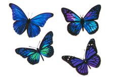 Jolifin Flora Nailart Tattoo Nr. 23