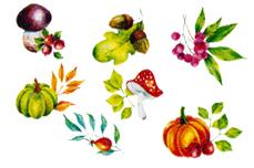Jolifin Nailart Autumn Tattoo 11