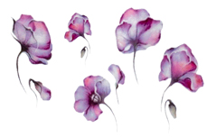 Jolifin Trend Tattoo Nr. 115