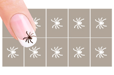 Nail-Art Schablone Nr.30 Spinne