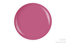 Jolifin LAVENI Shellac - dusky raspberry 12ml