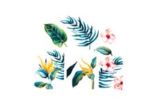 Jolifin Tropical Tattoo Nr. 35