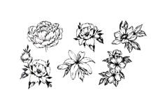 Jolifin Black Elegance Tattoo Nr. 70