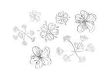 Jolifin LAVENI XL Sticker - Silver 11
