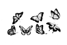 Jolifin Ombre Tattoo - Nr. 81