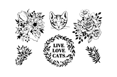 MoYou-London Schablone Crazy Cat Lady Collection 13