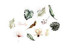 Jolifin Flora Tattoo - Nr. 49
