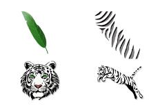 Jolifin Jungle Tattoo 6