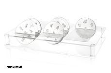 Jolifin Stamping Schablonen Display