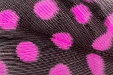 Jolifin Nailart Feder baby-pink leopard
