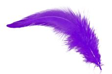 Jolifin Nailart Feder pure-purple