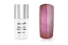 Jolifin Carbon Hologramm Quick-Farbgel raspberry 11ml