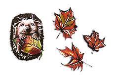 Jolifin Trend Tattoo - Herbst 1