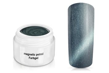 Farbgel magnetic petrol 5ml